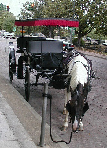 Horse and carriage on the original bricks of Front Street in Natchitoches, Louisiana.