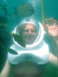 linda-fishbowl